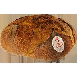 Pane di Altamura Basso
