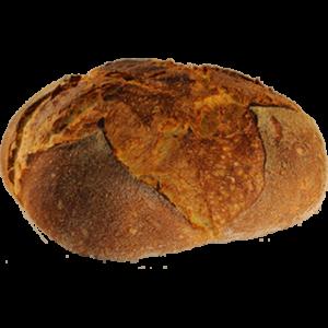 Pane di Altamura di tipo basso cotto in forno a legna.